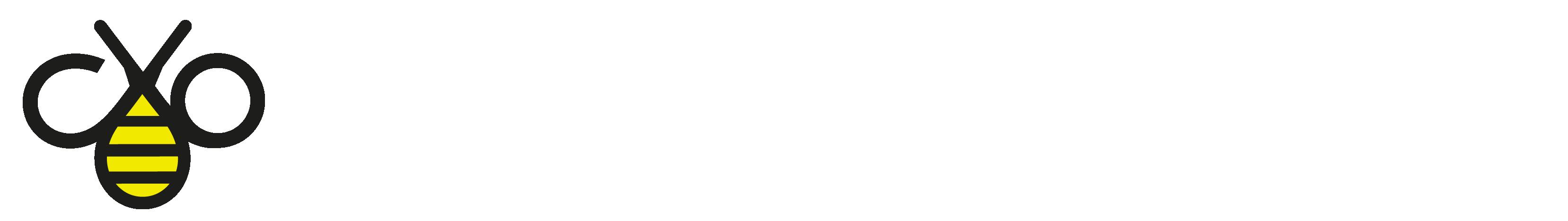 Logo header bianco