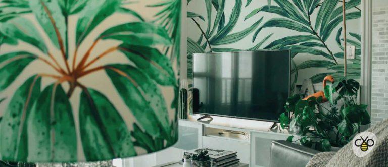 Le migliori piante per migliorare casa ed aria